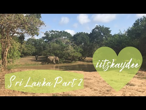 The Best of Sri Lanka Part 2: Jungle Beach and Elephant Safari - Must See Top Attraction