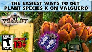 Easy Plant Species X Seeds on Valguero