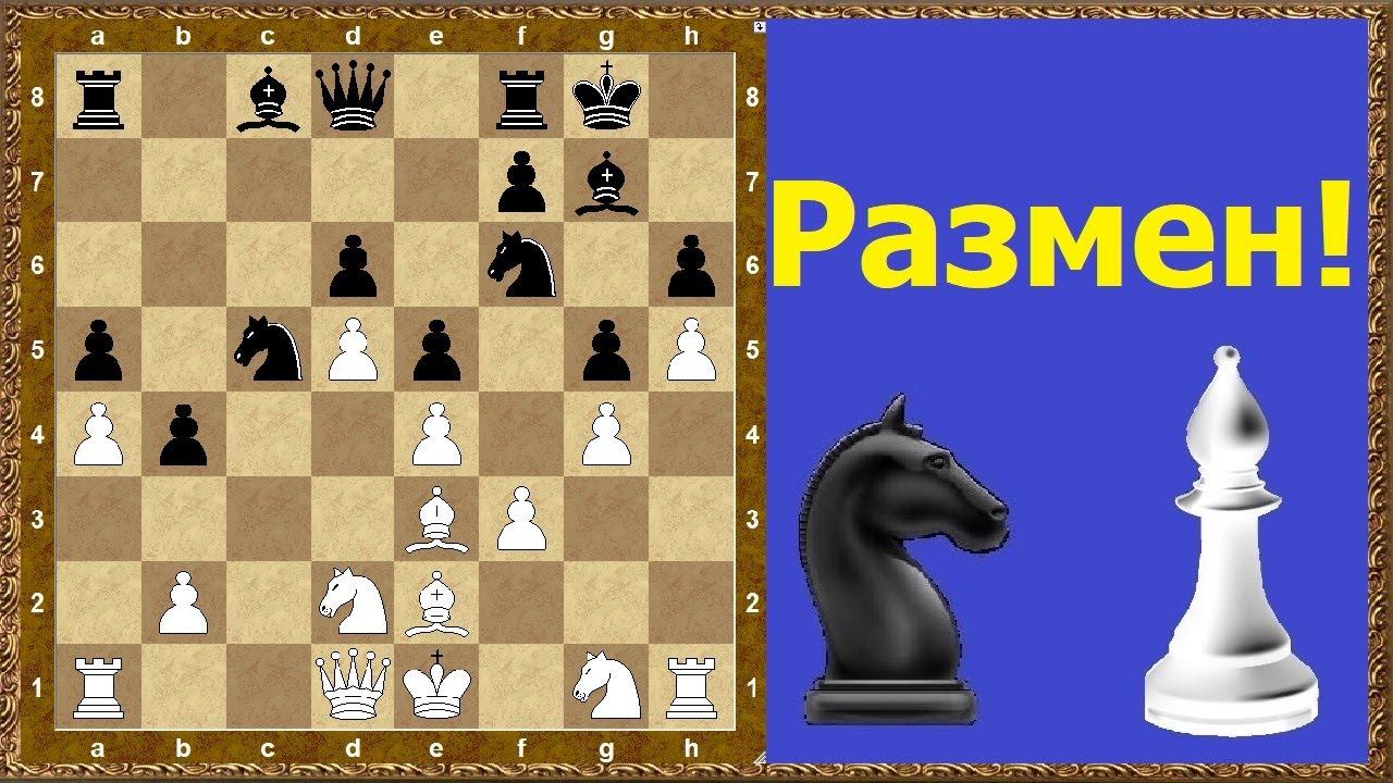 Шахматы обучение. Размен!