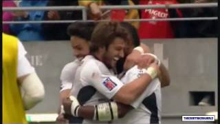 Stade Toulousain 2010/2011 Top 14 Champions Tribute