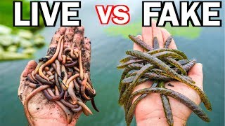 LIVE BAIT vs ARTIFICIAL LURE Fishing Challenge!!! (Surprise Catch!)