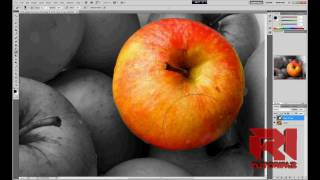 How to Create Color Splash Effect | Adobe Photoshop cs5(http://www.learnphotoshopnow.com/free-tutorials - See how this