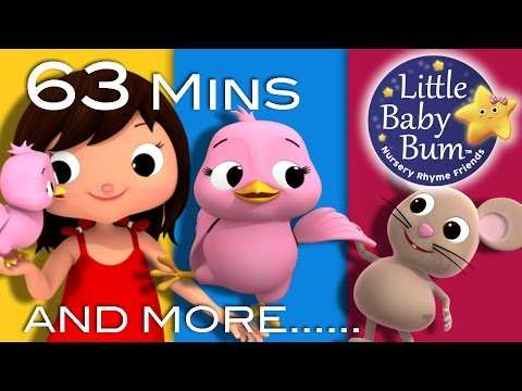 Thumbnail: Five Little Birds | Plus Lots More Nursery Rhymes | 63 Minutes Compilation from LittleBabyBum!