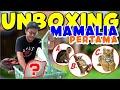 Unboxing Mamalia Pertama Di Bumi Reptile Gemesin Bgt  Mp3 - Mp4 Download