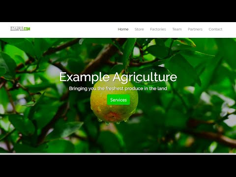 Bootstrap Farm Website Using HTML, CSS  And JavaScript - Code Therapy