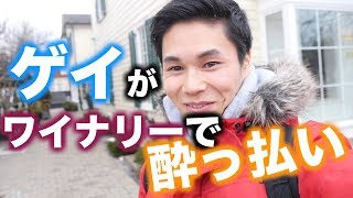 Thank you so much for watching. Please subscribe my channel. チャン...