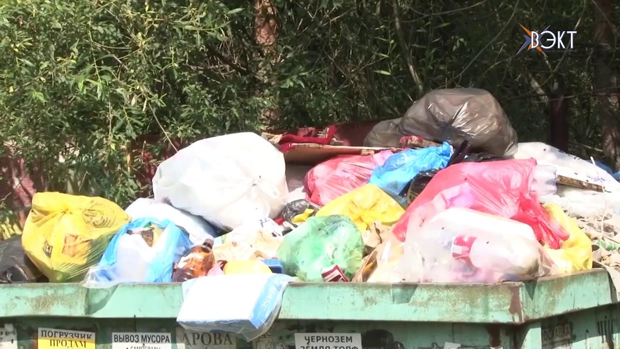 Председатель СНТ бездействует, садоводы страдают. Почему жители сами сбрасываются на вывоз мусора?