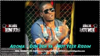 Aidonia - Don Deh Ya [Hot Yeer Riddim] January 2014