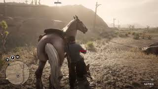 """Red Dead 2 Online - """"The Ballad of Blister Scruggs"""""""