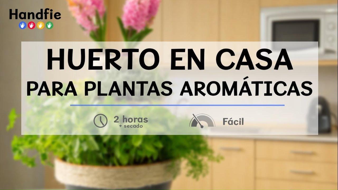 C mo hacer un huerto en casa para plantas arom ticas handfie diy youtube - Pequeno huerto en casa ...