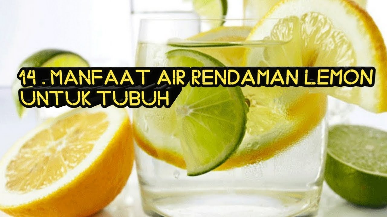 Manfaat Jeruk Lemon Youtube