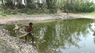Net Fishing | Catching Lot Of Big Fish With Cast Net | Net Fishing in the village (Part-262)