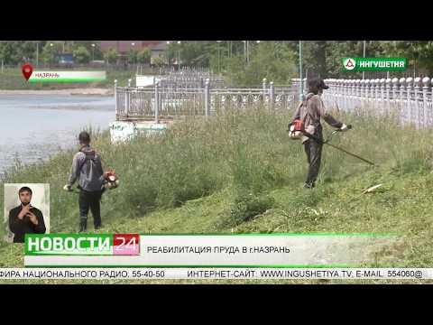 Реабилитация пруда в городе Назрань.