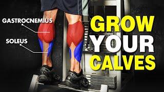 Stubborn Calves Won't Grow? 3 Quick Tips for Calf Growth