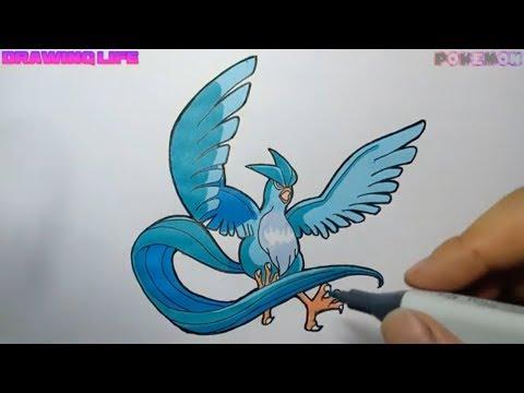 Cách Vẽ và Phối màu pokemon huyền thoại Articuno Chim Băng giá