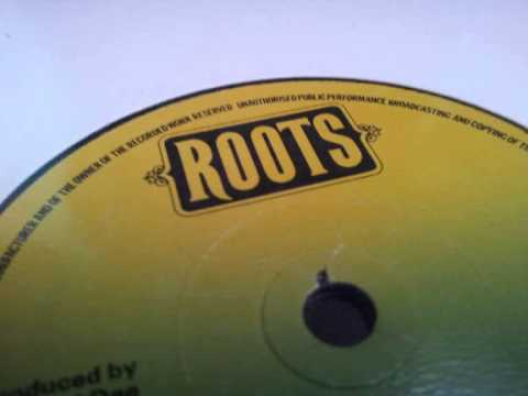 StereotronicSound - Roots Music