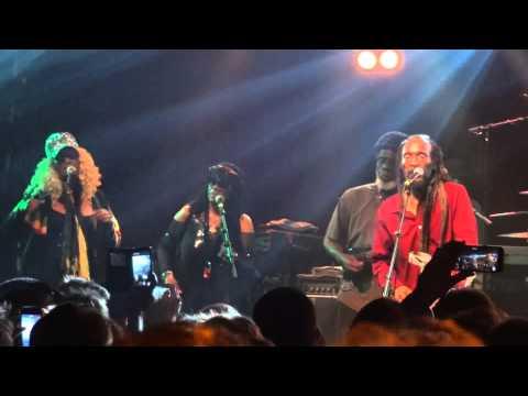 Israel Vibration - Same Song (Live)