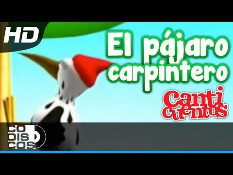El P�jaro Carpintero, Canci�nes Infantiles - Canticuentos