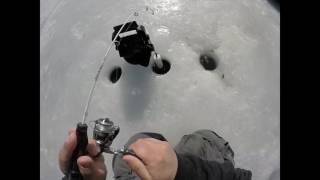 slab crappie ice fishing mn 2017