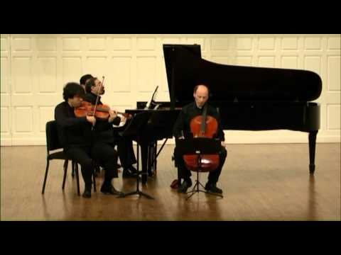 Brahms: Trio in A minor for Viola, Cello and Piano Op. 114 - 1st