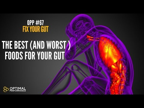 Ultimate Guide to Gut Health: How To Fix Your Gut