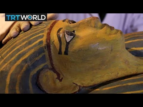 Ancient Discovery: Archaeologists unveil new findins in Egypt