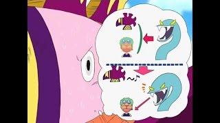 Khi Zoro bị chim troll :))