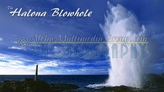 Halona Blowhole Up Close Low Angle Clip 2