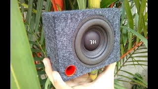 Strongest Bass Excursion Test Mini Subwoofer