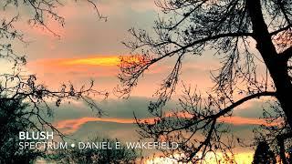 Daniel E. Wakefield - Blush