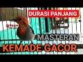 Cit Keres Gacor Pikat Durasi Panjang Masteran Burung Kemade Jawa Terbaik Ngalas(.mp3 .mp4) Mp3 - Mp4 Download