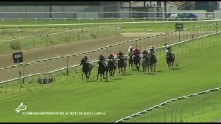 Vidéo de la course PMU PREMIO HIPODROMO DE LA TESTE DE BUCH