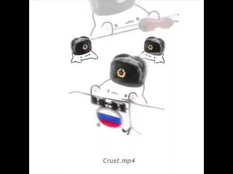 Russian bongo cat meme