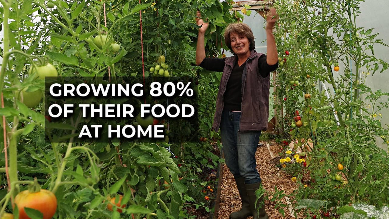 Incredible Abundance in a Small Garden | Self-sufficiency on a Small Scale Homestead