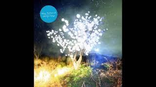 The Notwist - Vertigo Days (Full Album) 2021