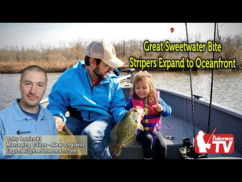 April 23, 2020 New England Fishing Report With Toby Lapinski