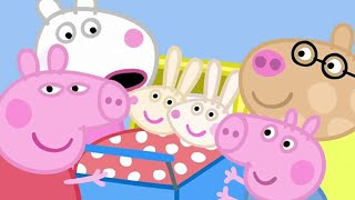 Peppa Pig English Episodes | Peppa Pig With Baby Rabbits | Peppa Pig Official