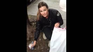 Kelly killoren Bensimon cleans up america