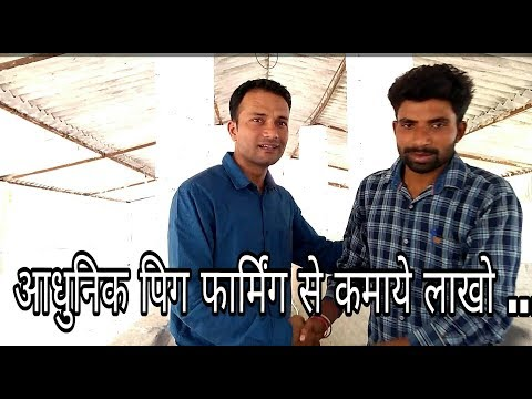 Pig Farming in India, How to Start Pig Farming in India In Hindi,Pig Farm,Piggery farming
