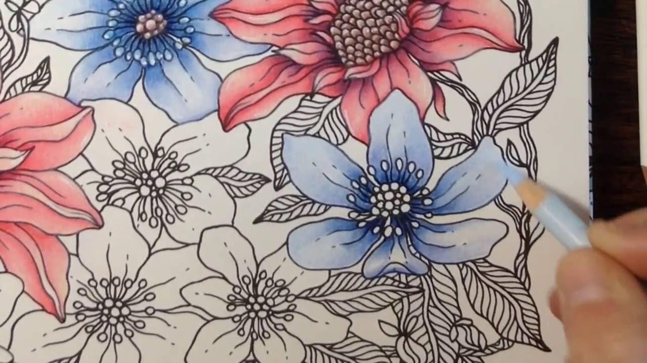 Daydreams Dagdrommar How To Color Flowers Part 3 Prismacolor Pencils Youtube