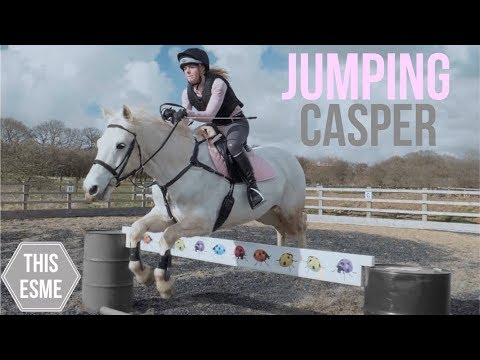 Jumping Casper & Grooming a very dirty Mickey!   This Esme
