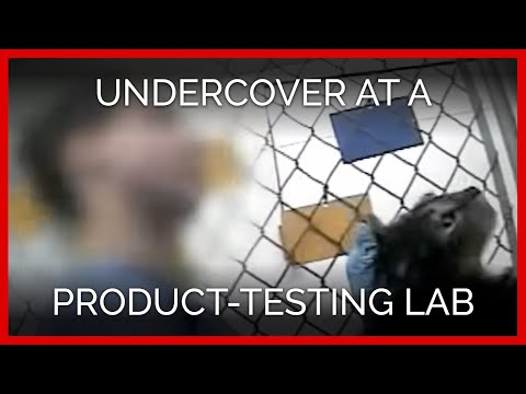 PLRS: Undercover at a Product-Testing Laboratory