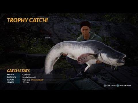 Fishing Sim World 92 Pound Curiosity |