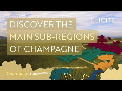 The Sub-Regions Of The Champagne Wine Region In France