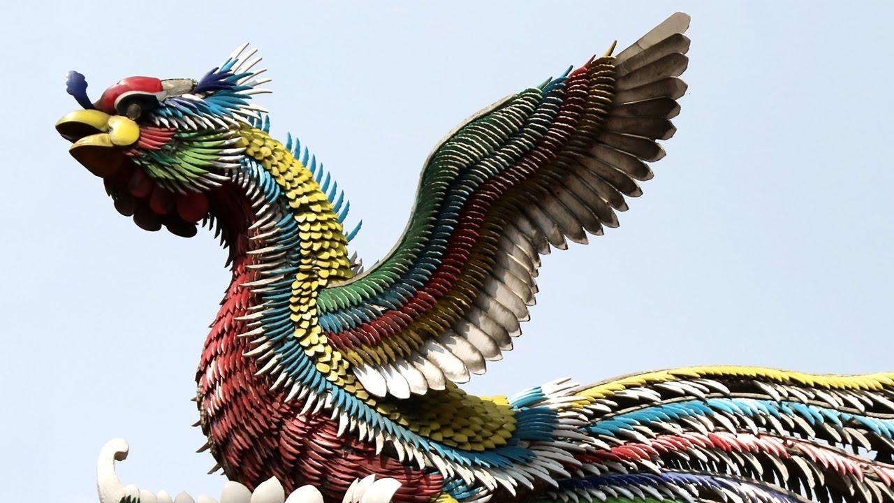 Phoenix King Of Birds Hello China 25 Youtube