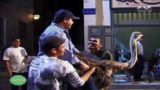 صاحبة السعادة | شاهد كواليس حصرية لمشهد النعامة الشهير بفيلم صاحب صاحبه