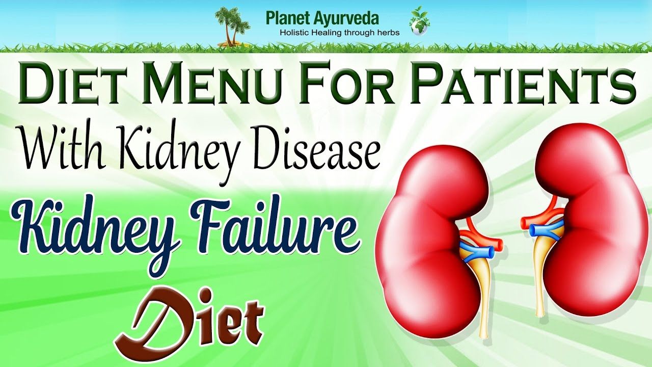 Diet menu for patients with chronic kidney disease stage or only failure also rh youtube