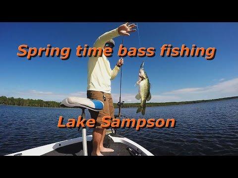 Spring Time Bass Fishing Lake Sampson FL