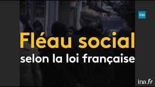 Homosexualité à la TV, des paillettes aux revendications | Franceinfo INA