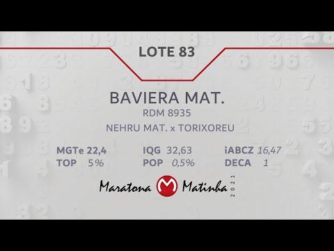 LOTE 83 Maratona Matinha